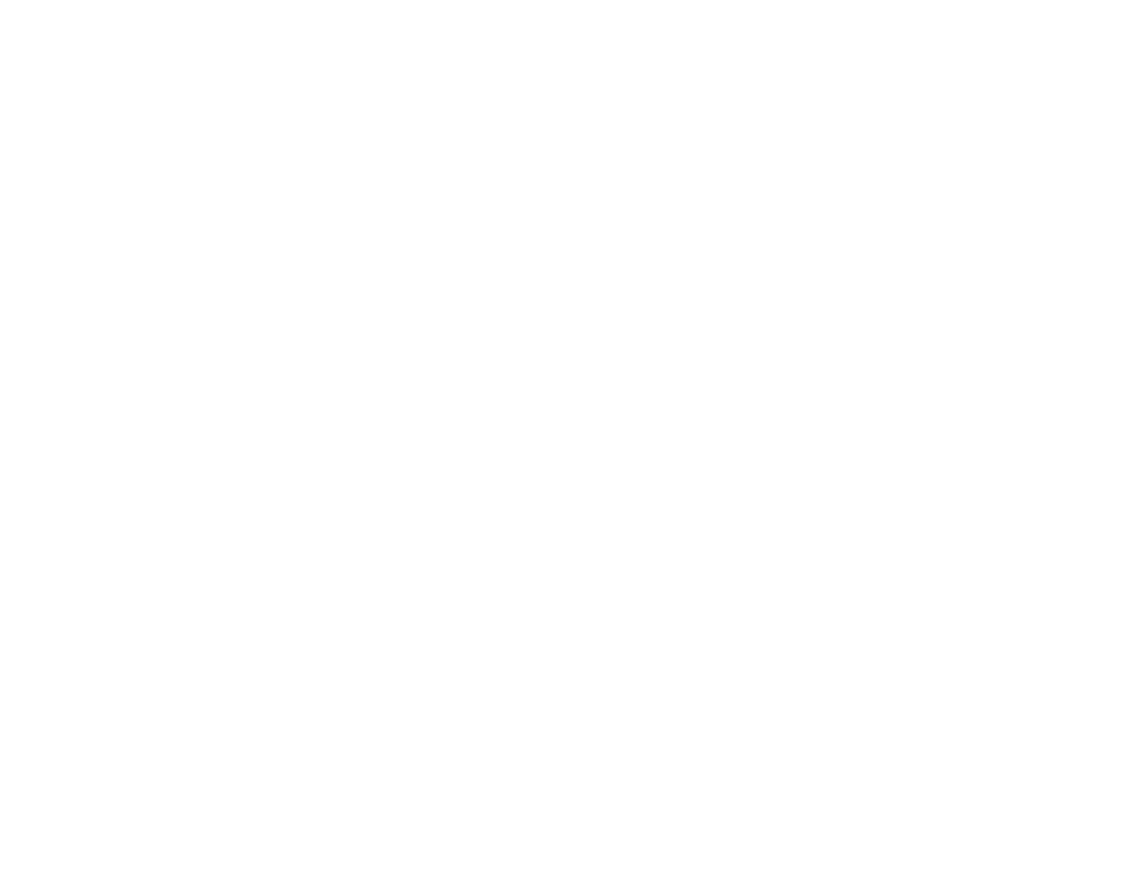 Advanced Network Security