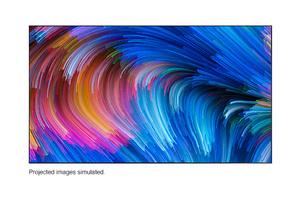 """SilverFlex™ Ultra 100"""" Ambient Light Rejecting Mega Screen"""
