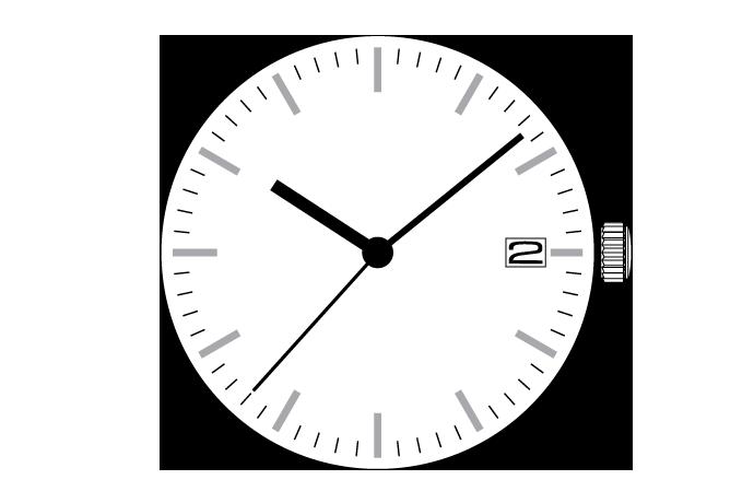MUSCLE MOVEMENT  VX Calendar  VX62E