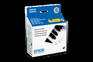 Epson S187 Black Ink