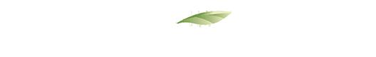 Environmental Positioning Statement