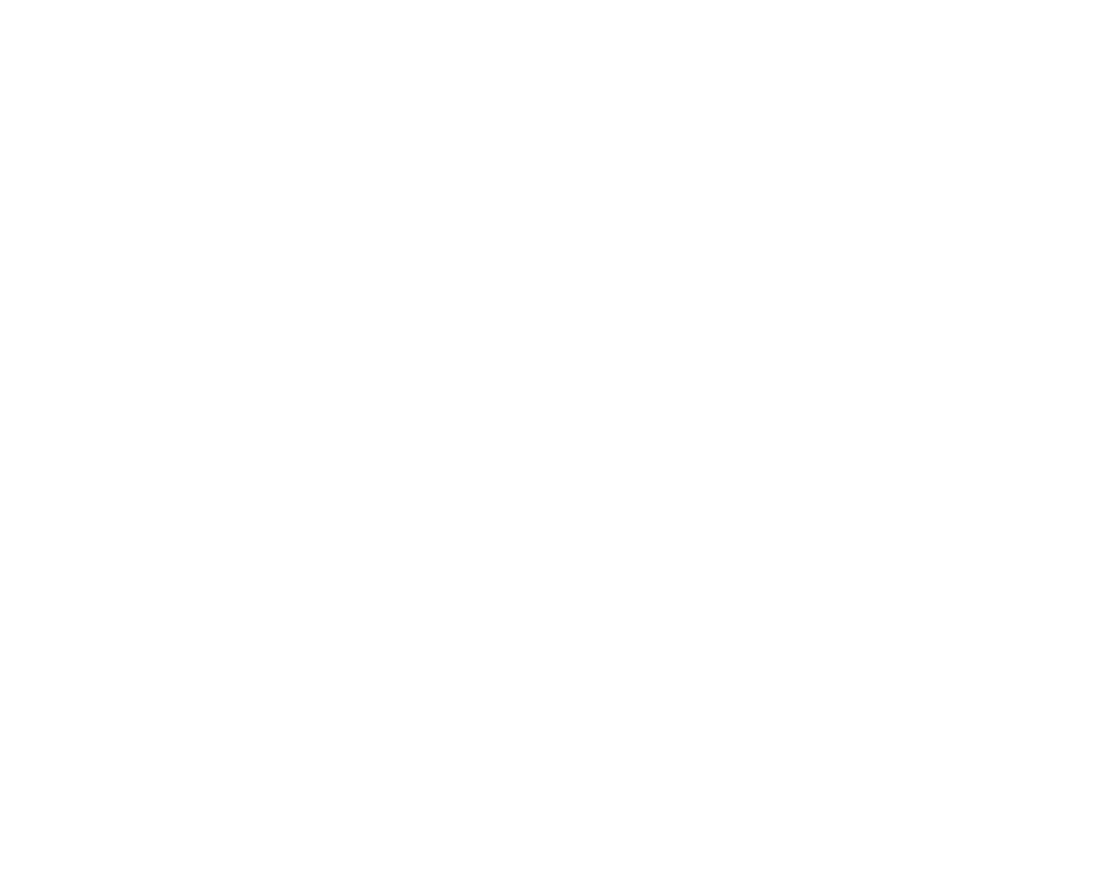 Fast Print Speeds